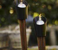Light Cone